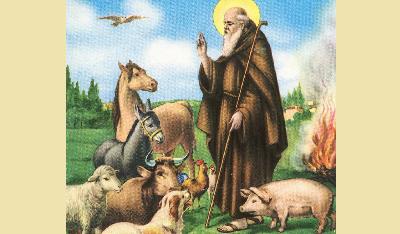 Risultati immagini per Sant'Antonio Abate