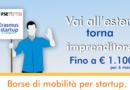 Erasmus Startup Campania: porta la tua impresa in giro per l'Europa!