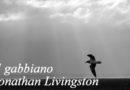 Jonathan Livingston: alla ricerca della libertà