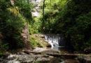 Alla scoperta della natura: la Valle delle Ferriere